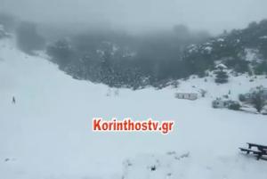 Κορινθία: Έγινε… Ελβετία η Ζήρεια – Ξεπέρασε τους 40 πόντους το χιόνι