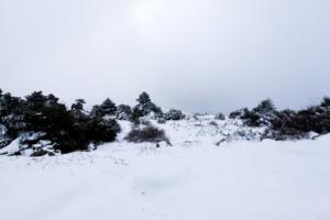 Έκαναν λευκά Χριστούγεννα! Κρύο και παιχνίδια στα χιόνια – Πού «πάγωσε» το θερμόμετρο