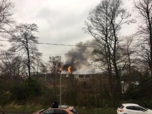 Πυρκαγιά σε ζωολογικό κήπο – Απομακρύνθηκαν οι επισκέπτες