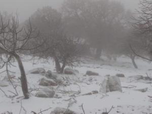 Καιρός: Χιονίζει στα ορεινά της Λέσβου
