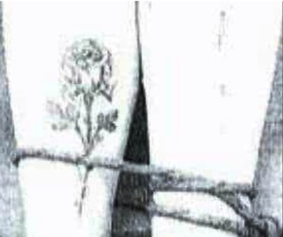 Εικόνα που «παγώνει» το αίμα: Η δολοφονημένη φοιτήτρια με δεμένα πόδια (ΦΩΤΟ)