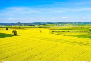 Χιλιάδες στρέμματα γης σε αγρότες, άνεργους και νέους χαρίζει η κυβέρνηση!