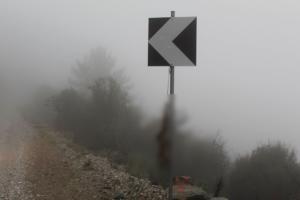 Λέσβος: Κρέμασαν νεκρή αλεπού σε πινακίδα – Σκληρές εικόνες σε δασική περιοχή!