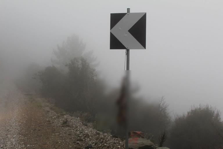 Λέσβος: Κρέμασαν νεκρή αλεπού σε πινακίδα – Σκληρές εικόνες σε δασική περιοχή! | Newsit.gr