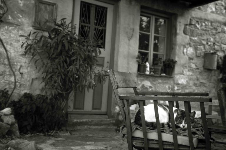 Βόλος: Έφυγαν αγκαλιασμένοι από τη ζωή στο κρεβάτι τους – Η ιστορία που ραγίζει καρδιές τα φετινά Χριστούγεννα!