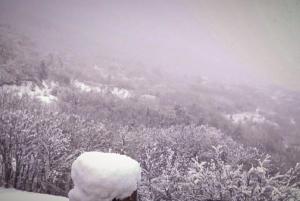 """Καιρός: """"Παρέλυσε"""" η χώρα από την επέλαση της """"Σοφίας"""" – Αναβολές πτήσεων, ακυρώσεις τρένων και… πολύ χιόνι"""