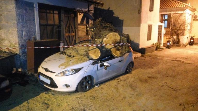 Λέσβος: Βγήκε να πάρει το αυτοκίνητό του και είδε αυτές τις εικόνες [pics]   Newsit.gr