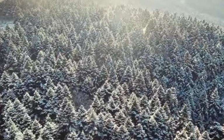 Πίνδος: H Παγωμένη Νεράϊδα εντυπωσιάζει και φέτος – Εκπληκτικά πλάνα από drone – video | Newsit.gr