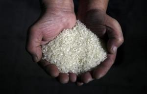 Η τελετή σε ινδουιστικό ναό κατέληξε σε τραγωδία! 11 νεκροί από δηλητηριασμένο ρύζι