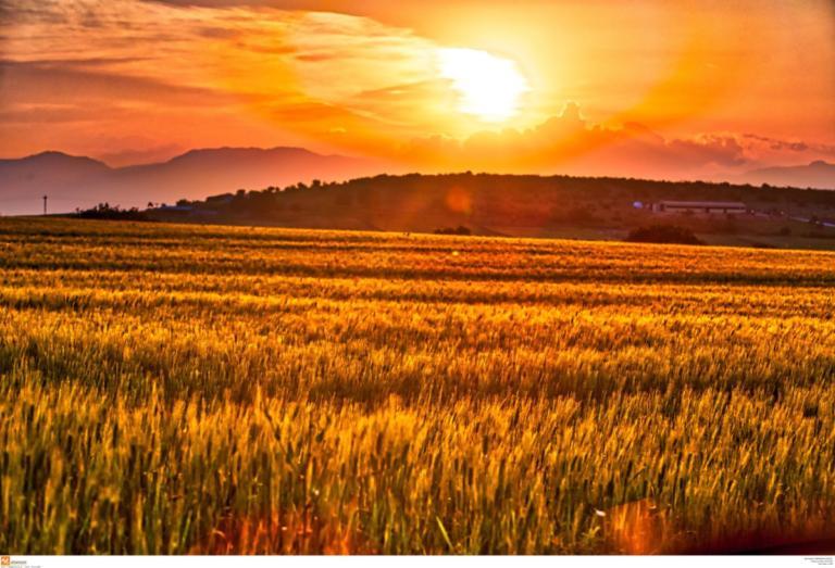 Δέος! Αυτή είναι η πιο κοντινή φωτογραφία του Ήλιου! – video | Newsit.gr