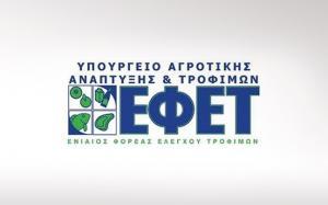 Εγκρίθηκε ο διορισμός προέδρου και αντιπροέδρου στον ΕΦΕΤ
