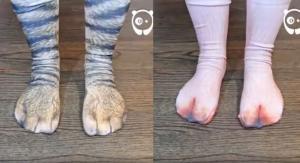 Κάλτσες βγάζουν τα… ζωώδη ένστικτά σας!