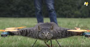 Μετέτρεψε τη νεκρή γάτα του σε drone
