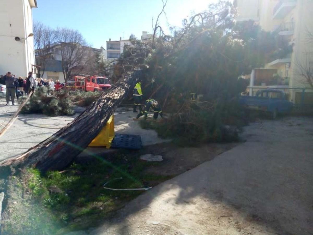 Πολλά προβλήματα στη Λάρισα από τον δυνατό αέρα
