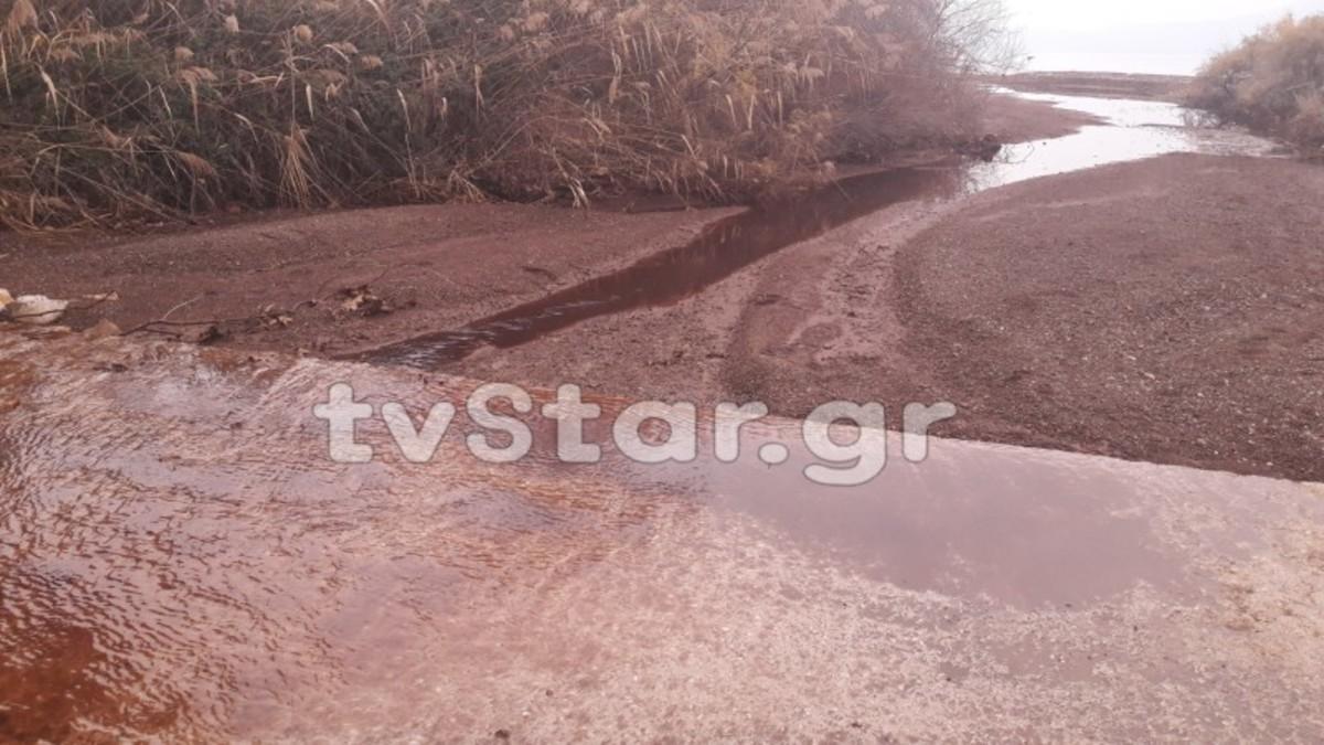 Φθιώτιδα: Ελαιοτριβείο μόλυνε ξηρά και θάλασσα – Έπιασαν τον υπεύθυνο [vid]