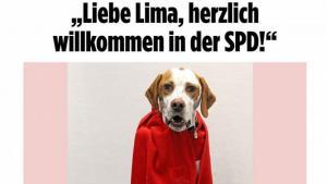 Μπάτε σκύλοι αλέστε… κυριολεκτικά στο SPD! «Έγραψαν» σκύλο ως μέλος! [pic]