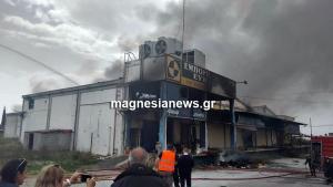 Ένας νεκρός σε μεγάλη φωτιά στη Μαγνησία! [pics]