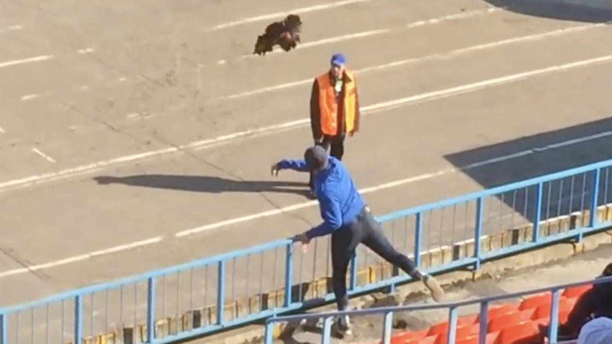 Απίστευτο σκηνικό στη Ρωσία! Φίλαθλος πέταξε κόκκορα σε προπονητή [vid]