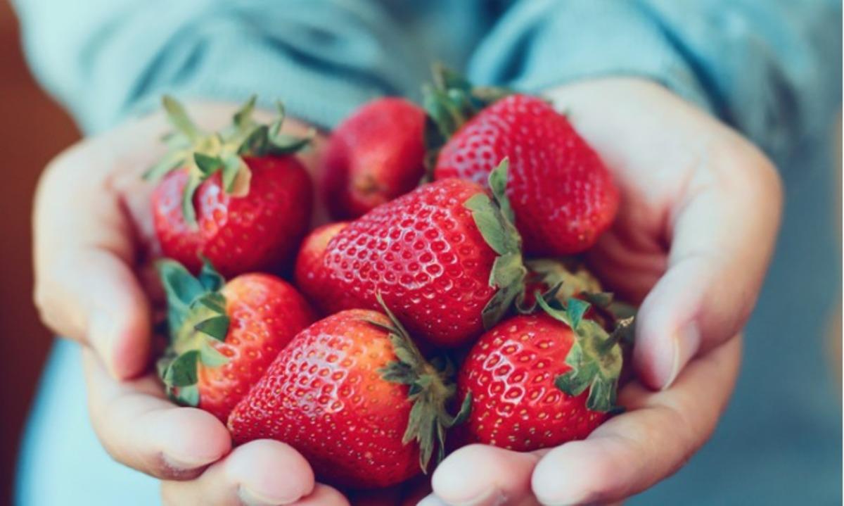 Τι προσφέρουν οι φράουλες στην υγεία σας – Σπουδαία οφέλη αλλά και κάποιοι… κίνδυνοι
