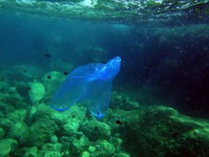 Μόνο θλίψη! Πλαστική σακούλα βρέθηκε στο βαθύτερο σημείο των ωκεανών