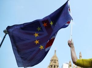 Η Βουλή των Λόρδων ψήφισε να παραμείνει η χώρα στις ευρωπαϊκές υπηρεσίες μετά το Brexit