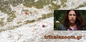 Τρίκαλα: Αυτό είναι το θύμα της οικογενειακής τραγωδίας! Την έσφαξε μπροστά στα μάτια της κόρης τους