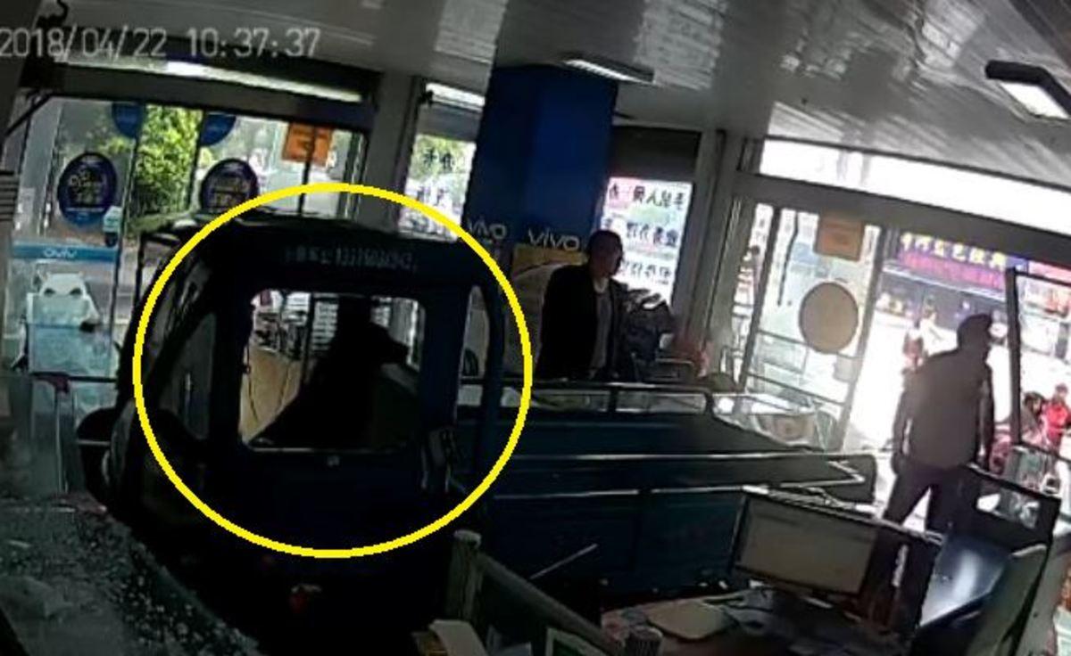 """Κίνα: Σκύλος """"οδήγησε"""" με φόρα φορτηγάκι μέσα σε ένα μαγαζί"""
