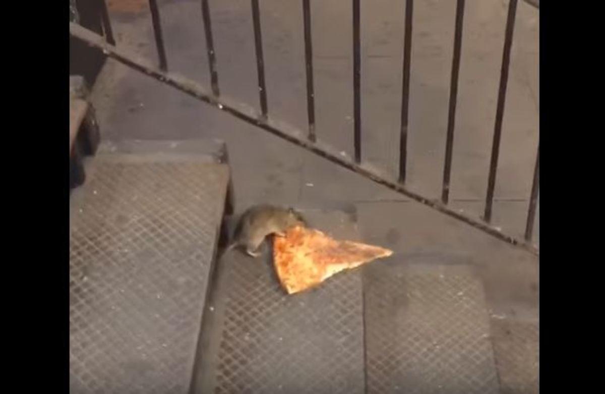 Κινούμενη… πίτσα τράβηξε το ενδιαφέρον των επιβατών στο μετρό της Νέας Υόρκης