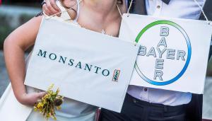 """Η Bayer εξαγοράζει και """"τελειώνει"""" τη Monsanto"""
