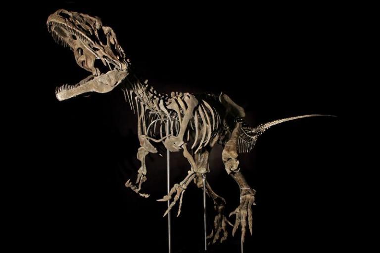 Αυτός ο… δεινόσαυρος πωλήθηκε 2,3 εκατ. ευρώ