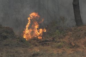 """Φωτιά στα Χανιά – Σε απόσταση """"αναπνοής"""" από σπίτια [pics,vid]"""