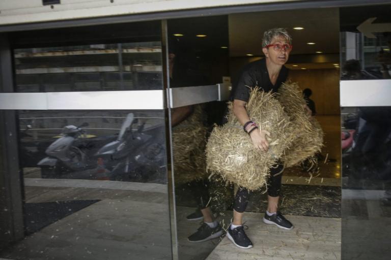 """Η Αυγή Βουτσινά """"ξαναχτύπησε""""! Μετά την κότα στο Μαξίμου, σανός στα γραφεία των ΑΝΕΛ! [pics]"""
