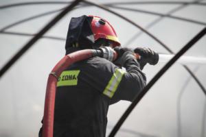 Ηλεία: Υπό μερικό έλεγχο η φωτιά που πλησίασε σπίτια στην Σπιάντζα – Παραμένουν οι πυροσβέστες [pics]