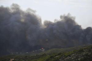 Έβρος: Συνεχίζει να καίει η φωτιά στη Λευκίμη – Στάχτη 200 στρέμματα πευκοδάσους!