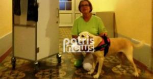 Από αδέσποτο στην Πύργο έγινε σκύλος θεραπείας στην Ελβετία