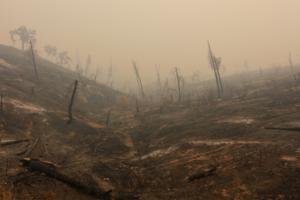 Σε φονικό πύρινο κλοιό η Καλιφόρνια – 17 μεγάλες πυρκαγιές