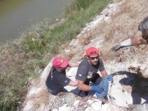 Ηράκλειο: Βρέθηκε σε χαράδρα ο γλάρος που παρασύρθηκε από αυτοκίνητο – Οι εικόνες της διάσωσης [pics]