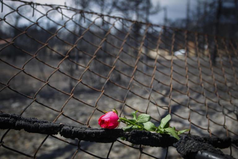 Ψυχολόγοι σε γονείς: Κρατάτε τα παιδιά μακριά από τις εικόνες της τραγωδίας στην Αττική – Κίνδυνοι για στρες και φοβίες!