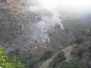 Χανιά: Υπό έλεγχο η φωτιά στον Κακόπετρο – Η ώρα για τον απολογισμό της καταστροφής!