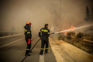 Συναγερμός στην Πυροσβεστική! Φωτιά στο Σέσι Γραμματικού στον Μαραθώνα