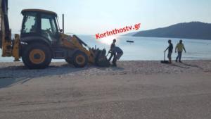 Κόρινθος: Επιτέθηκαν στον Δήμαρχο και το συνεργείο που ξήλωνε παράνομες ομπρέλες – video