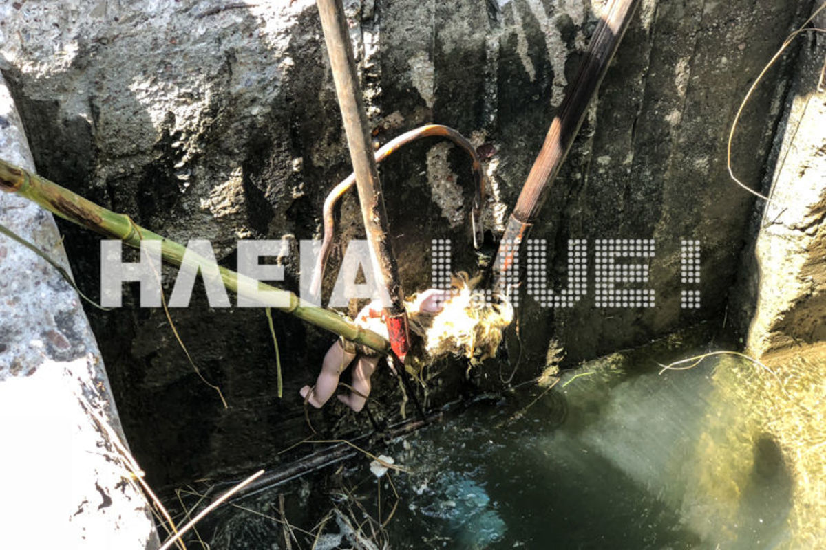 Γαστούνη: Το πτώμα ήταν… παιδική κούκλα! [pics]