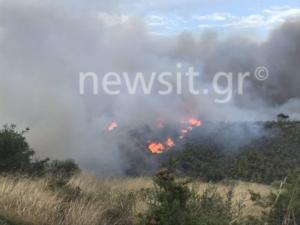 Σε πύρινο κλοιό η χώρα! Φωτιά στην Πεντέλη – video
