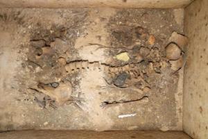 Βρέθηκε ασύλητος τάφος επιφανούς γυναίκας στη Σίκινο [pics]