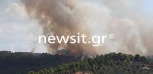 """Καίγεται η Ηλεία! – Μάχη με την φωτιά δίνουν οι πυροσβέστες σε δύο """"μέτωπα"""" [pics] – video"""