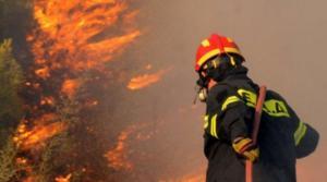 Φωτιά στη Νέα Μάκρη – Συναγερμός στην Πυροσβεστική