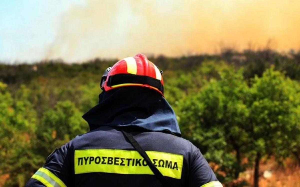 Φωτιά στην Σαλαμίνα κοντά σε κατασκήνωση προσκόπων