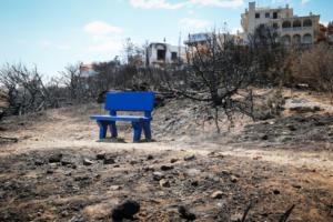 Πυρκαγιά ξέσπασε στο Ηράκλειο – Άμεση επέμβαση της πυροσβεστικής