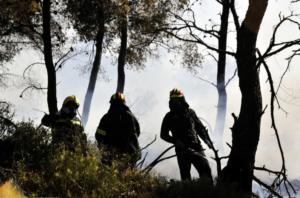 Ελέγχονται οι δύο πυρκαγιές στην Κερατέα – Άνεμοι έως 7 μποφόρ στην περιοχή!