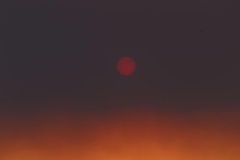 """Φωτιά στην Εύβοια: """"Εγκαταλείψετε την περιοχή!"""" Οι ώρες της αγωνίας"""